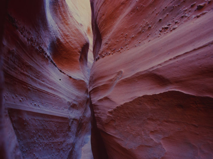 The sinews of Spooky Gulch with high contrast of light and dark. ©1999 Derek Henry Flood